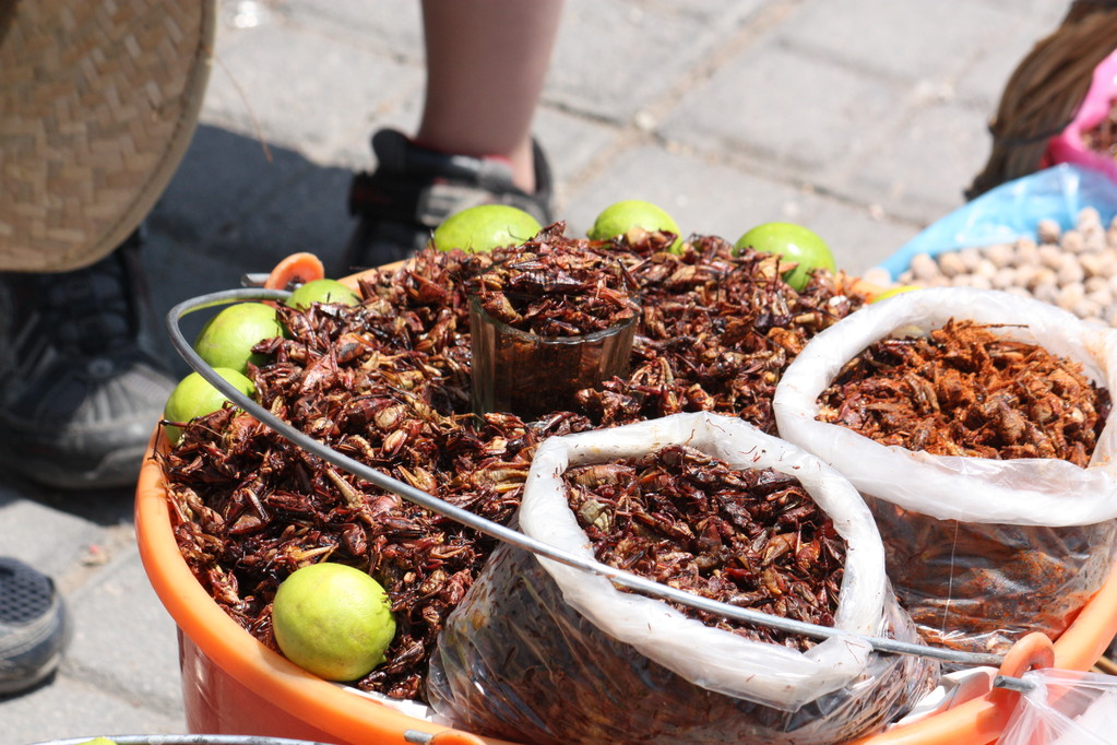 Crickets are sold along the market streets and some of the players were brave enough to try them.