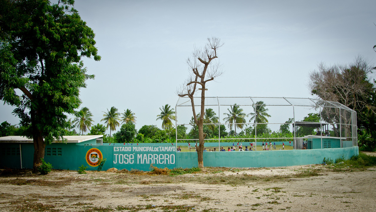 The local field in Tamayo