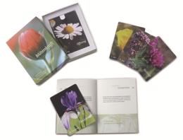 Cover Sonderegger Blütenkraft Kartenset