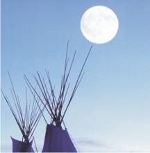 Bild Tipis im Mondschein - Initationsseminare