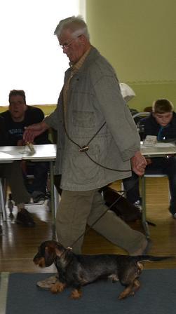 """Herr Bode mit """"Naldo von den Fuchsbergen""""  Bewertung: Vorzüglich 2, Res. CAC-J VDH, Res. CAC-J"""