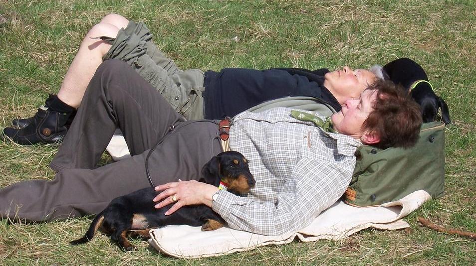 Nach der Arbeit konnten Hund und Frauchen so richtig entspannen
