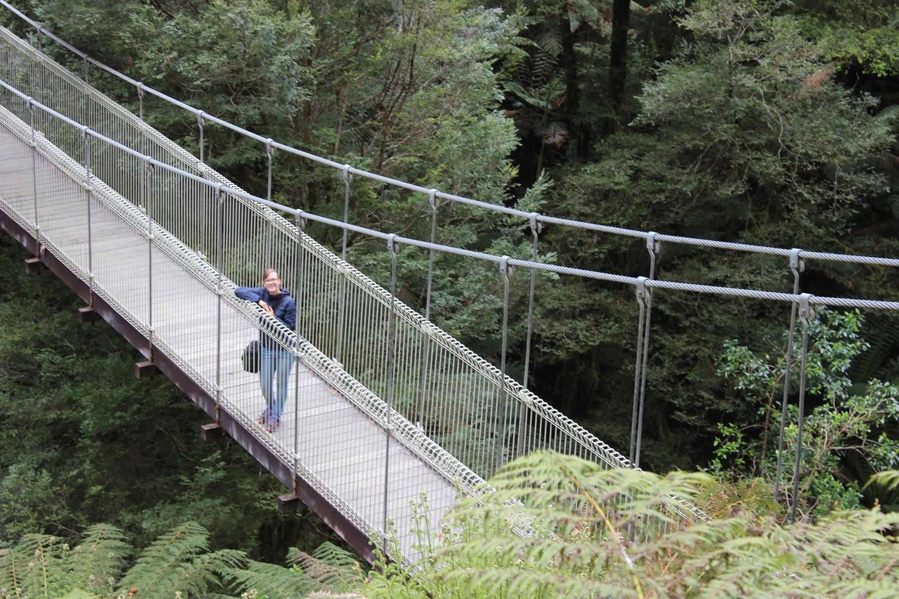 Tarrabulga Nationalpark, Hängebrücke