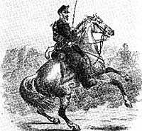 Historisches Pferdebild