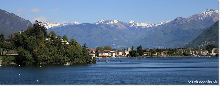 Blick auf Ascona.