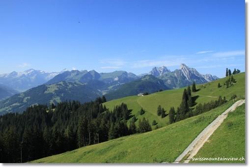 Wanderung auf dem Rellerli bei Gstaad, 14.07.2010