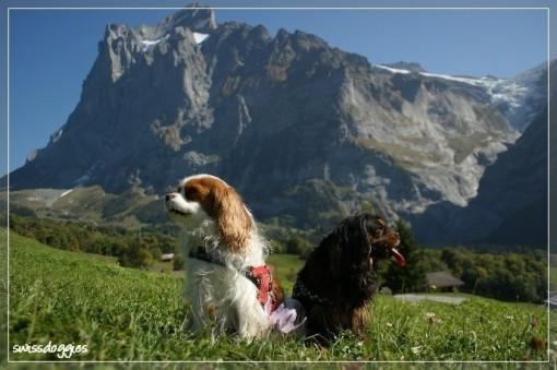 Okt. 09: Ausflug nach Grindelwald