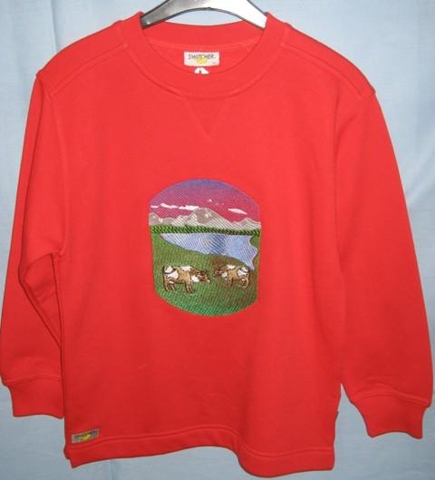 Pullover mit Landschaftsbild