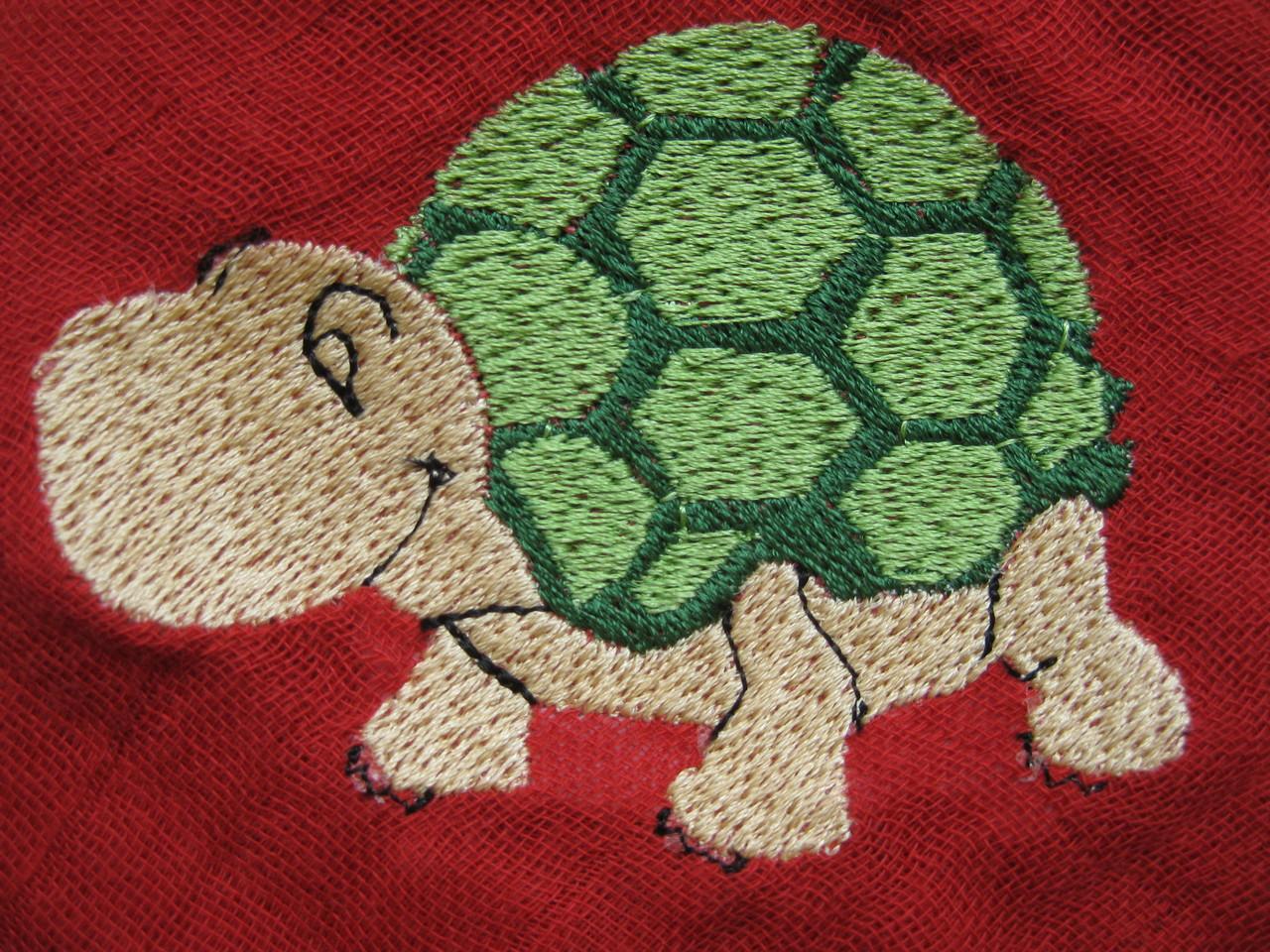 Schildkröte auf Nuscheli