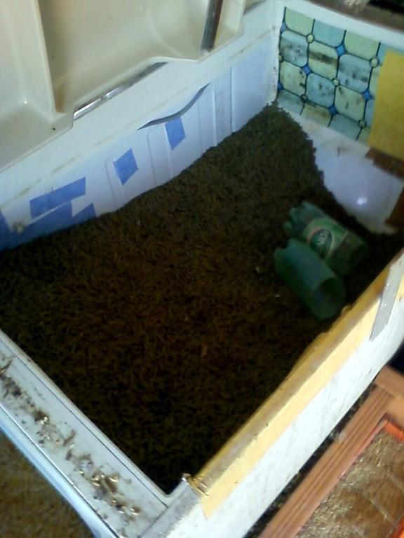 Reserva pienso del conejos - Réserve nourriture des lapins
