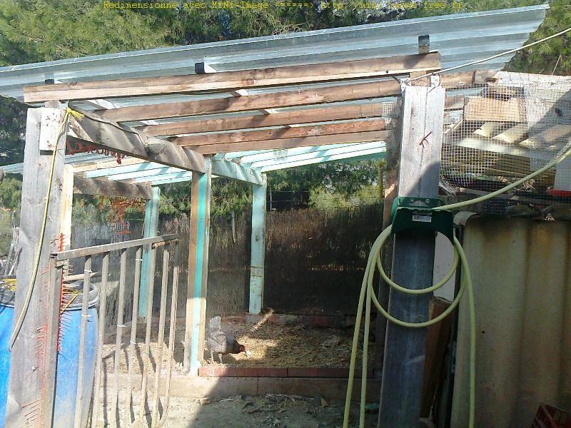 Desmontar del gallinero - Demontage du poulallier