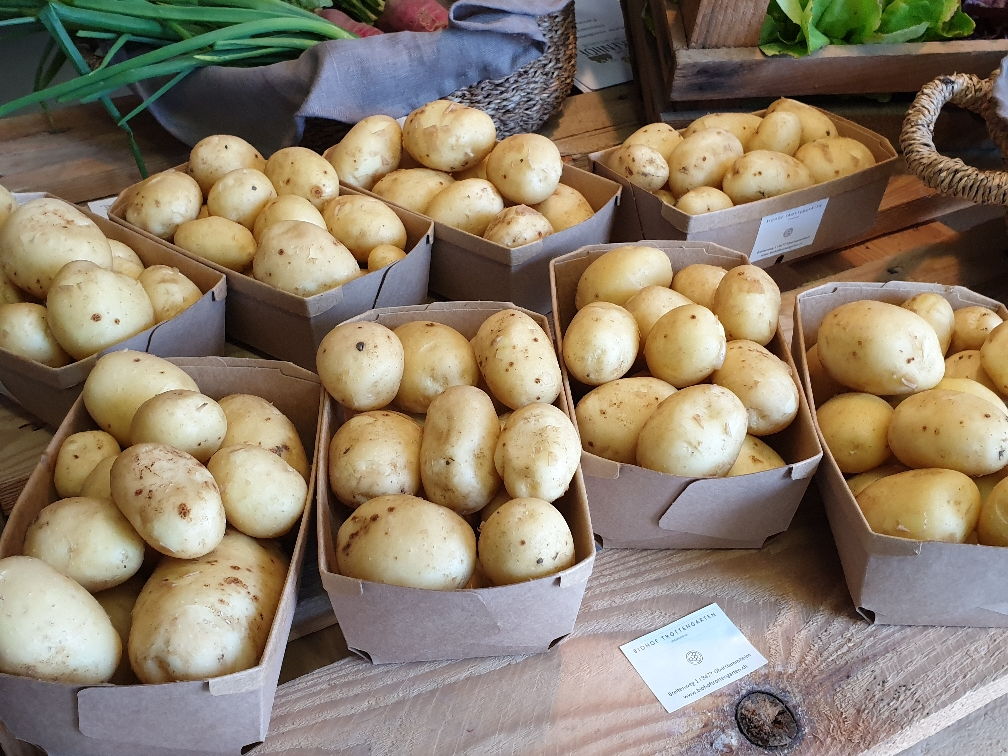 Baby Kartoffeln Agata