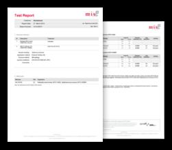 MIS Test Report - Sample