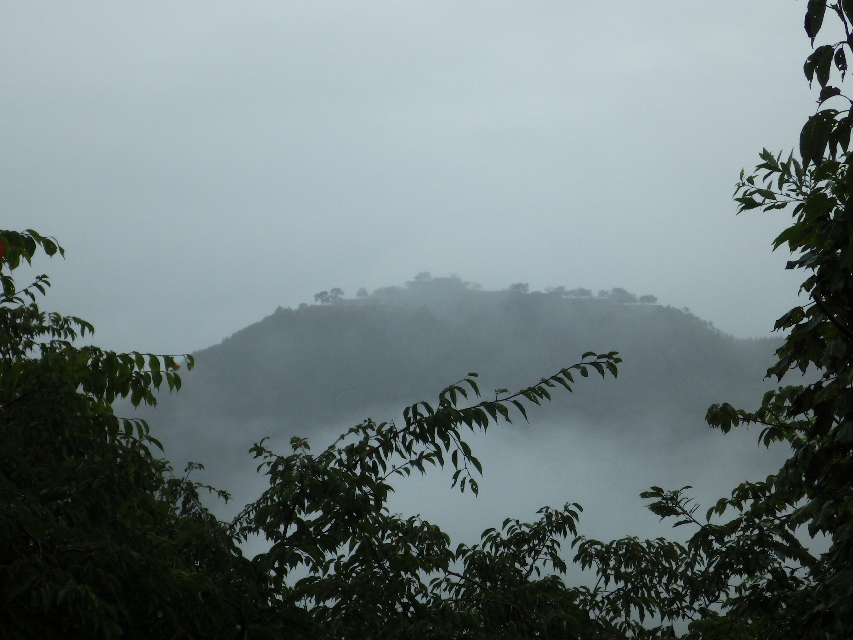 霧の中のマチュピチュ