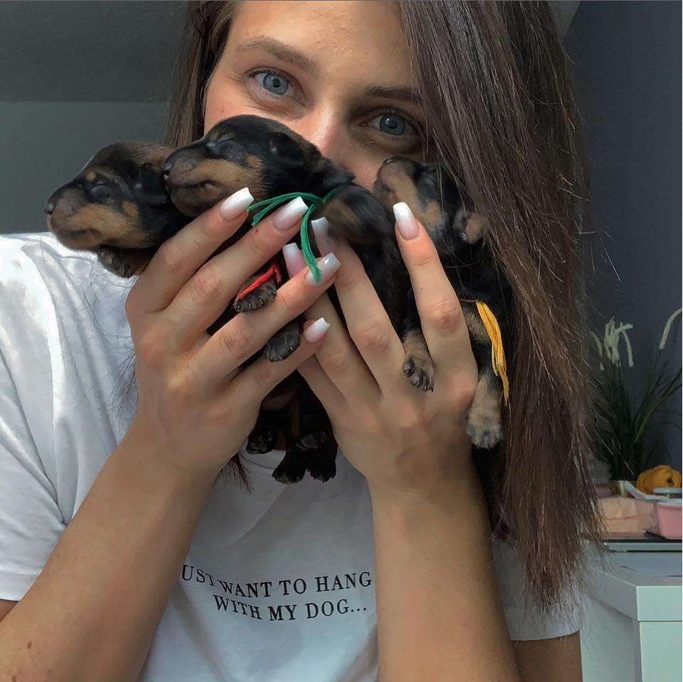 our A-Litter puppy bunch