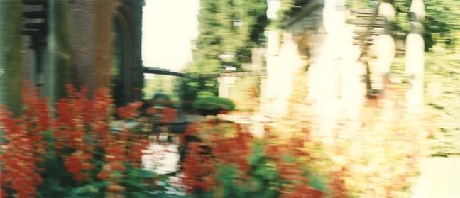 Il Giardino 8, 2000, Color Print, 84 x 198 cm