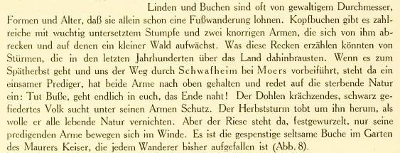 Literatur-Quelle aus Dr. Richard Klapheck: Die Baukunst des Niederrheins, Bd. 1, Seite 12, Düsseldorf 1916