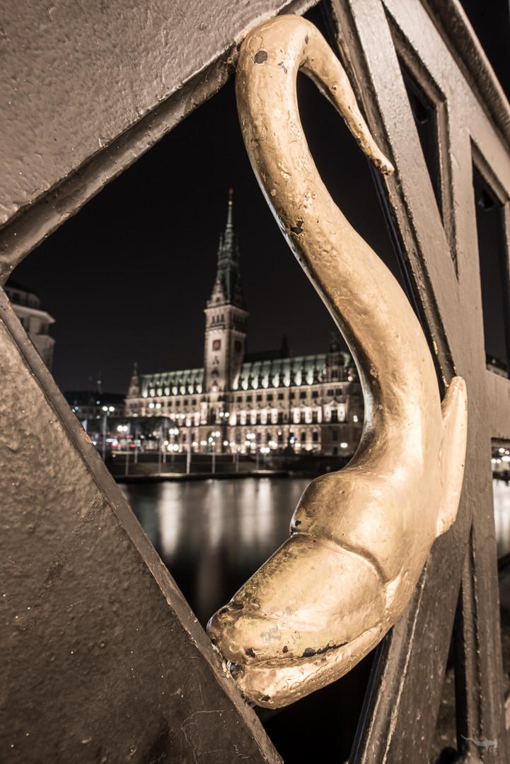 City hall view - Hamburg/Germany