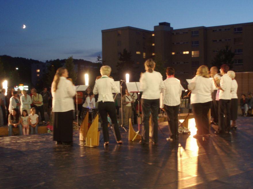 "Kleinformation ""Pan-da-Bärn"" Hinterkappelen im Sommer 2009"