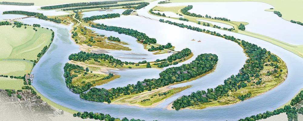 Een selectie van mijn meest speciale natuurontwikkelingsprojecten in het rivierengebied...