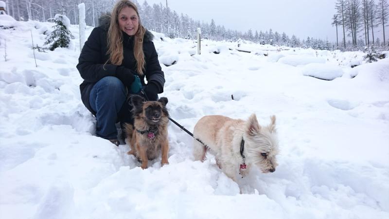 Spaziergang im Schnee an der Nordhelle