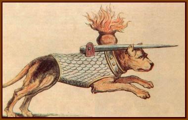 L'emploi du chien contre la cavalerie lourde (Moyen-Age)