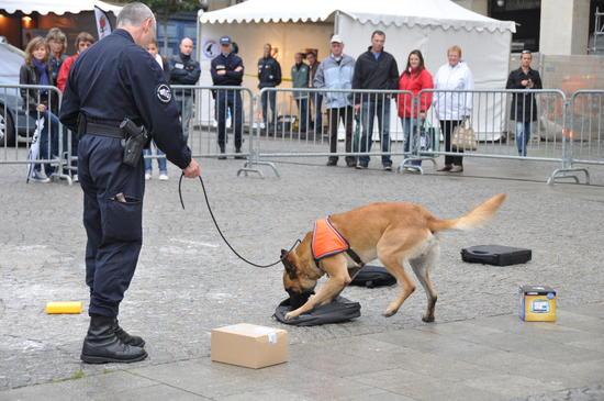Recherche de stupéfiants - Police