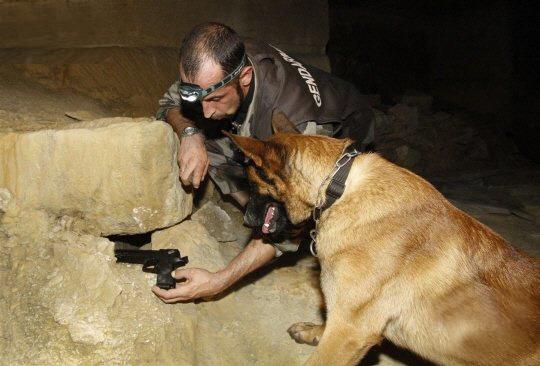 Recherche armements et munitions - Gendarmerie