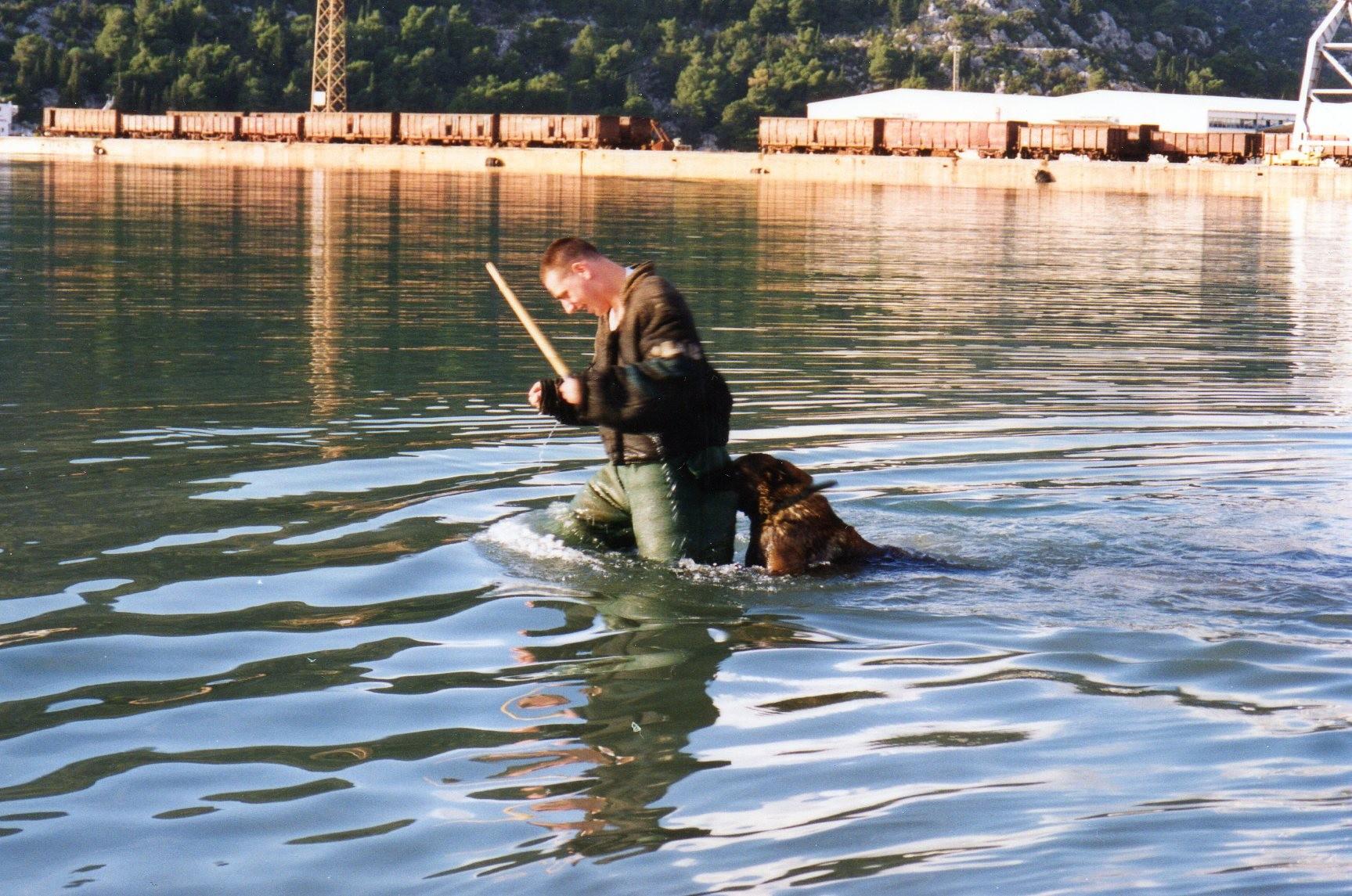 """Mordant dans la mer adriatique, le chien s'appelle """"Famas"""" (ex-yougoslavi à Plôce)"""