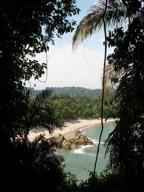 Jour 7 : Parc Nationale de Manuel-Antonio - Cote Pacifique Centrale
