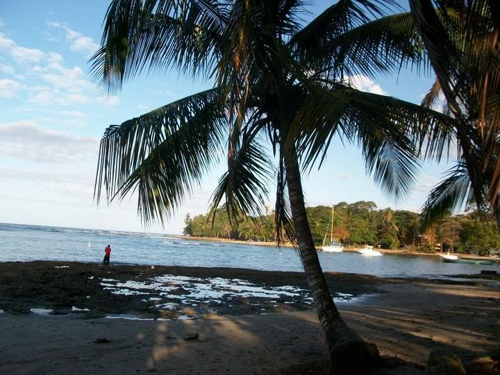 Jour 5 : Puerto Viejo - Cote Caraibe Sud