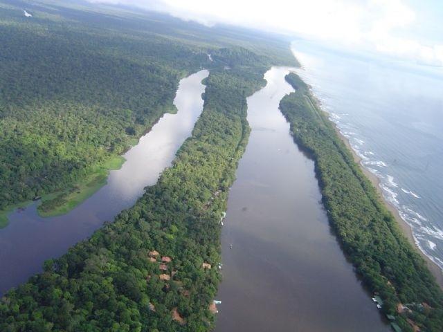 Canaux de Tortuguero - cote Caraibes Nord