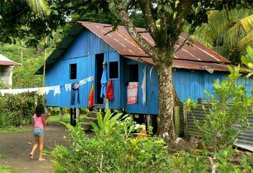 Jour 2 : Maison Tica a tortuguero - Cote Caraibe Nord