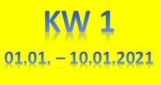 1. Wochenbericht 2021 (01.01.-10.01.2021)