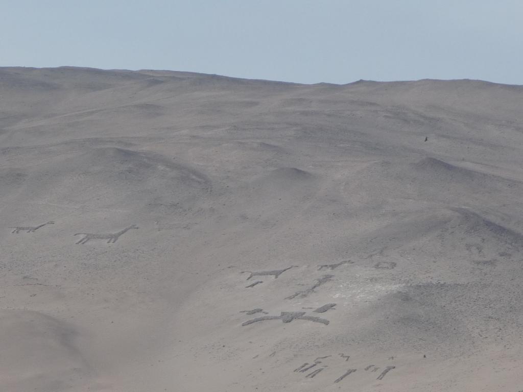 Petroglyphen und Geoglyphen