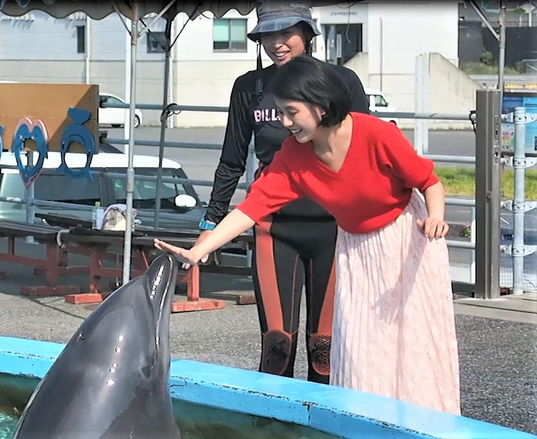 🐬室戸ドルフィンセンター!イルカさんと仲良しこよし!