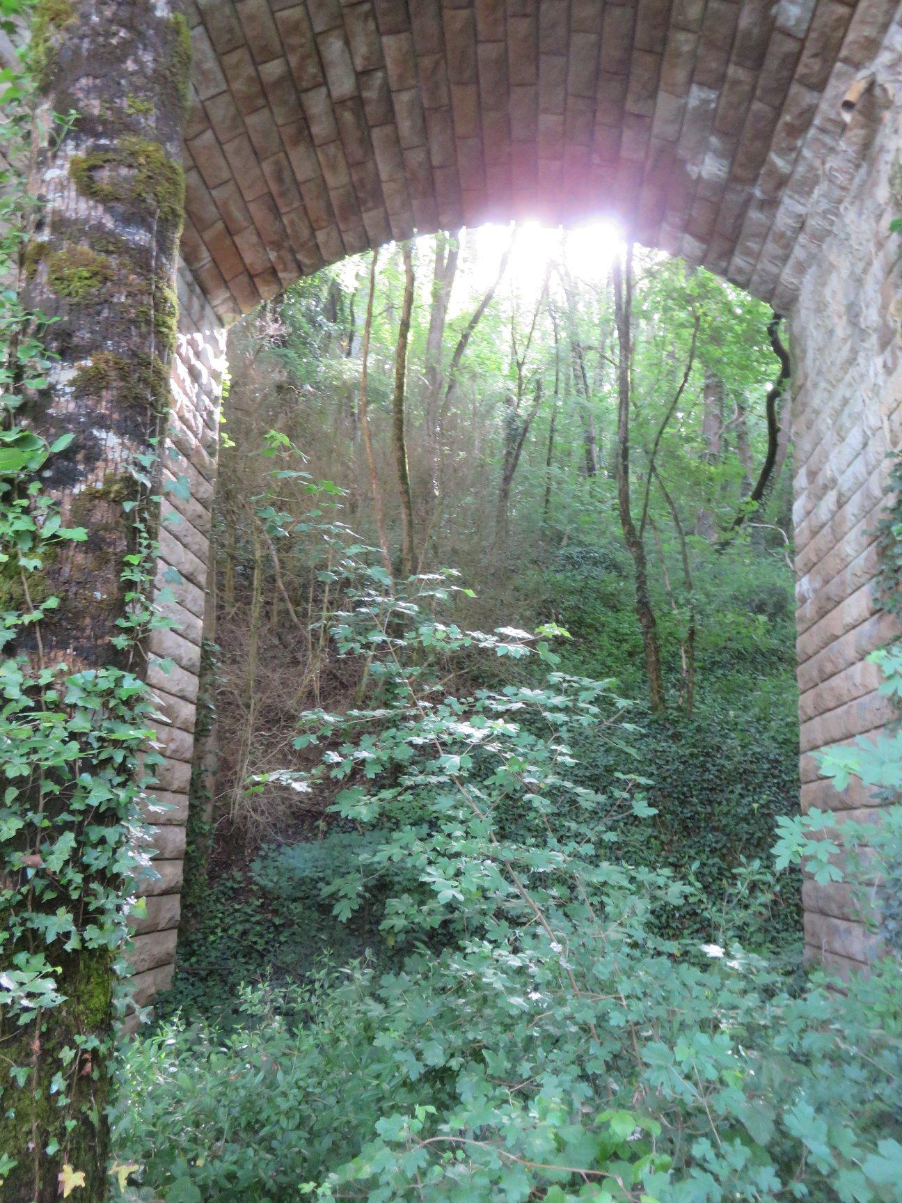 Une des 44 arcades du pont de Sillars.