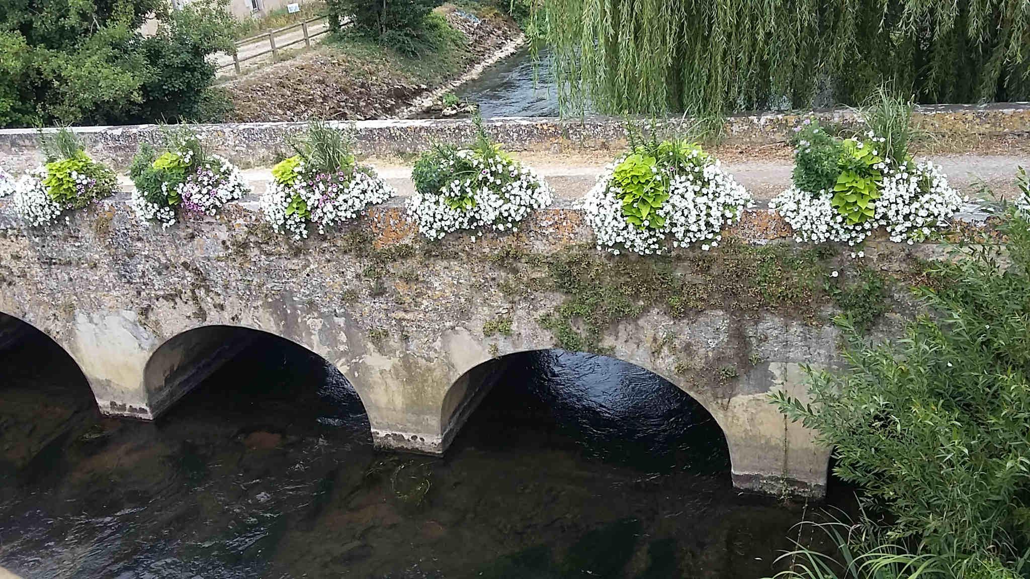 Vieux pont fleuri de Chasseneuil.