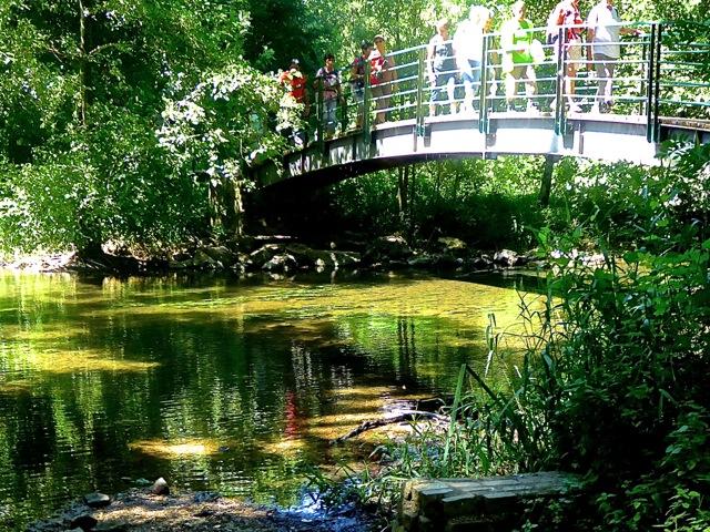 Pont sur la Vonne