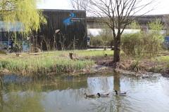 Foto Umweltzentrum Neckar-Fils