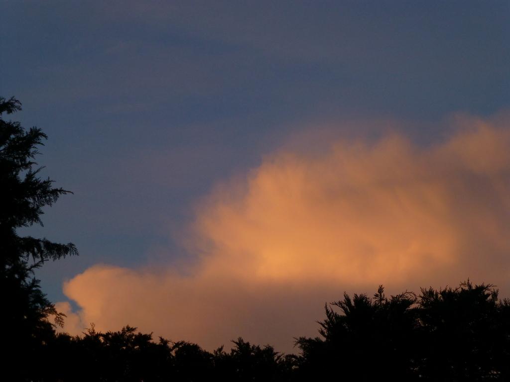 Abendwolke