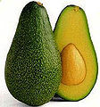 Avocado (US Department of Agriculture)