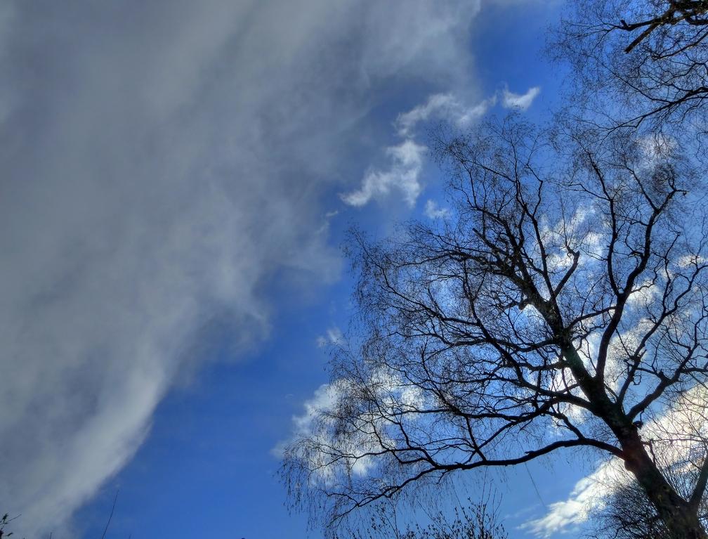 Blauer Himmel (endlich!)