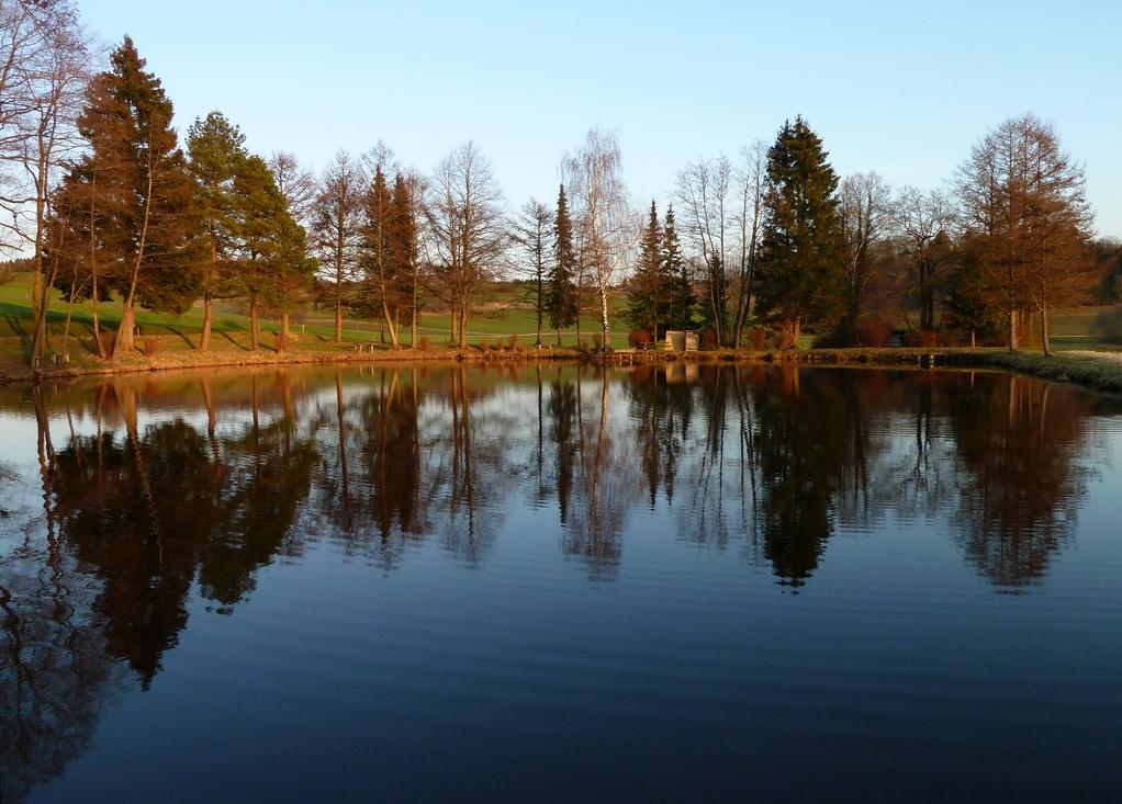 Der Harmatinger FIsch-Teich