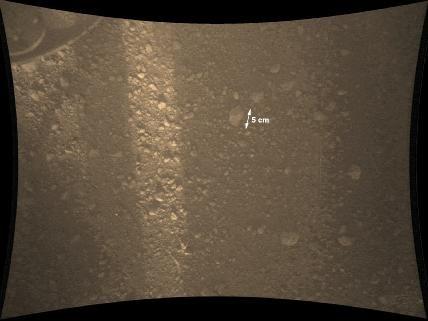 """Die Marsoberfläche aus ca. 70 cm Entfernung, aufgenommen vom """"Mars Descent Imager"""" (MARDI)  einige Minuten nach dem Aufschlag auf die Marsoberfläche. MARDI ist eine hochauflösende Kamera."""