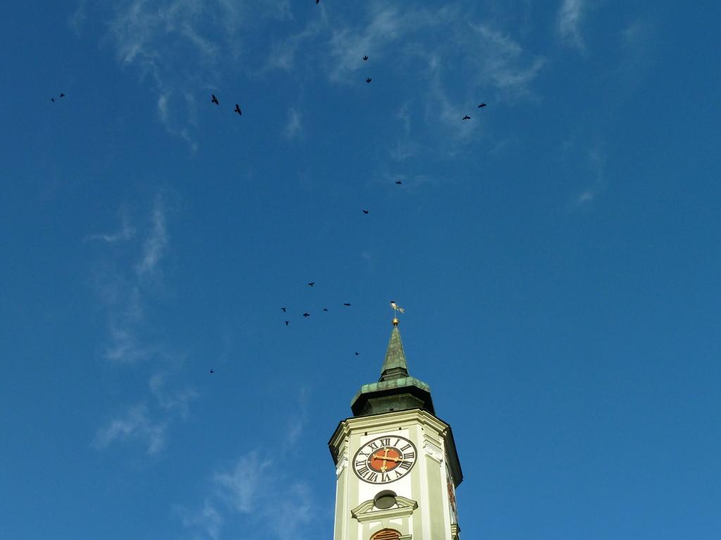 Kloster Schäftlarn mit Dohlenmeute