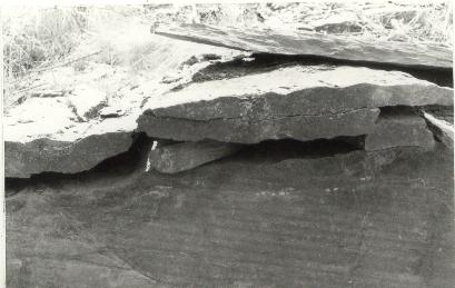 feuilletage de la roche permettant le délitage