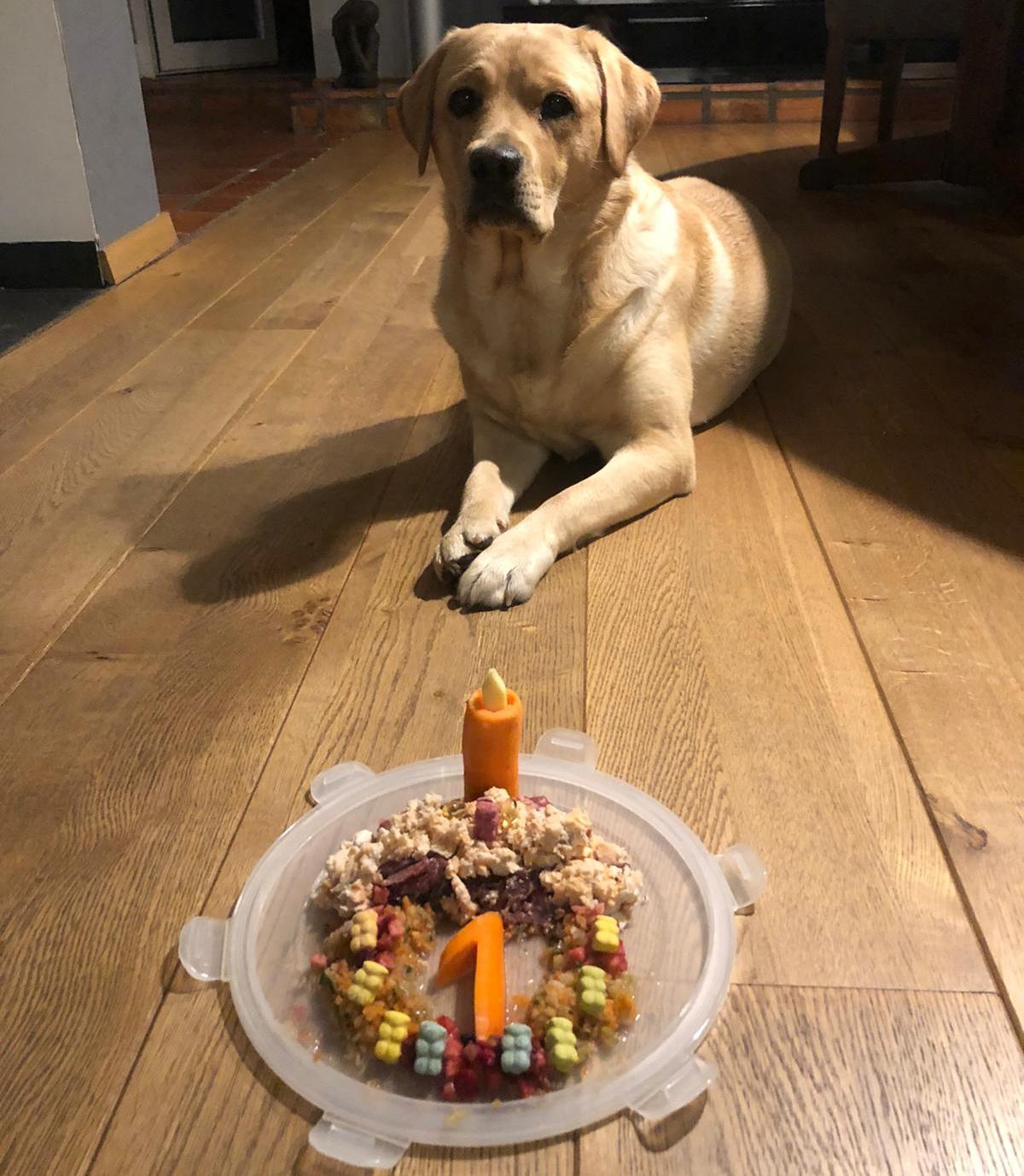 Oona vor ihrem 1. Geburtstagsteller!