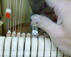 音色を調節して整えるハンマー整形・整音