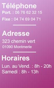 302 chemin vert - 01090 Montmerle